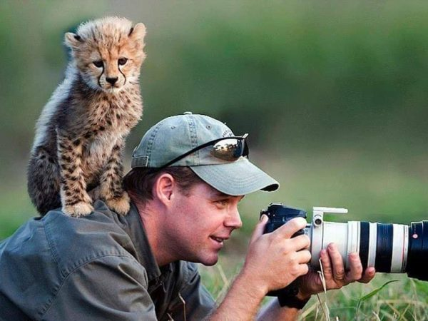 Training Animal Photography : Capture Animal Best Moment 4