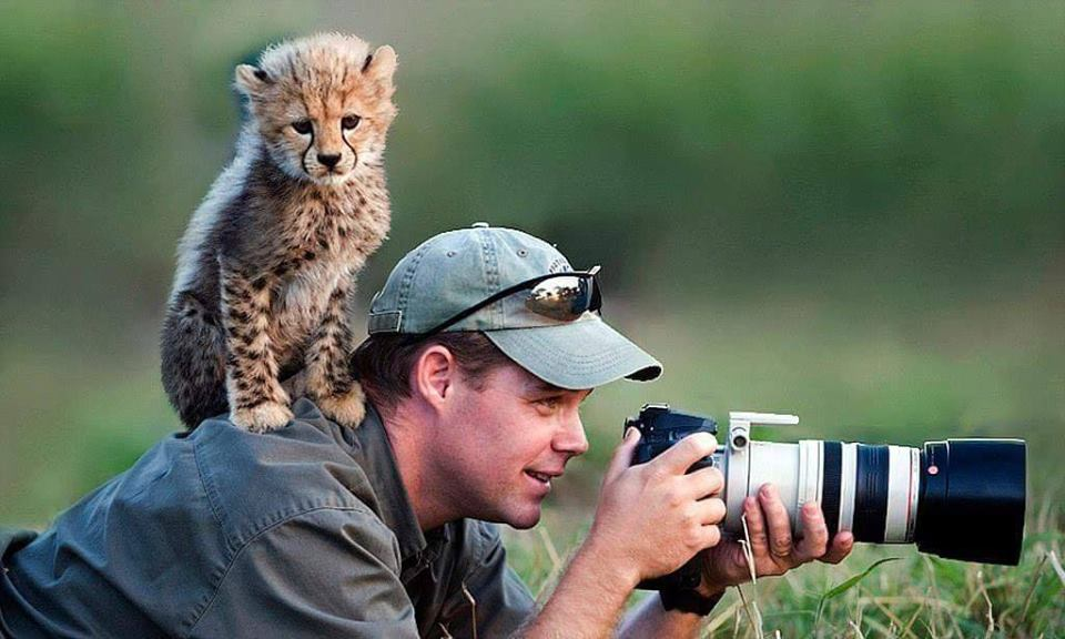 Training Animal Photography : Capture Animal Best Moment 6